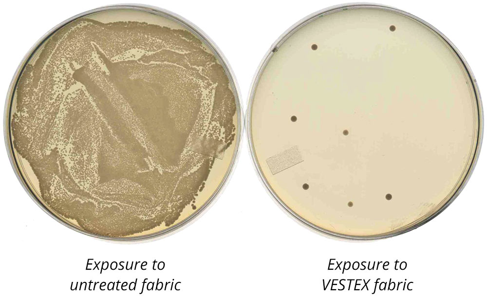 petri dishes showing microbial exposure on untreated fabric vs exposure on VESTEX fabric